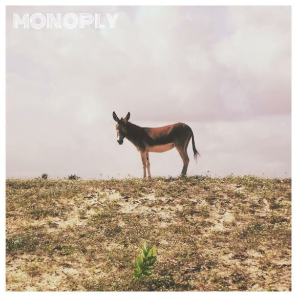 Monoply: Melancholic-urban Blend of Downbeat and Alternative Pop